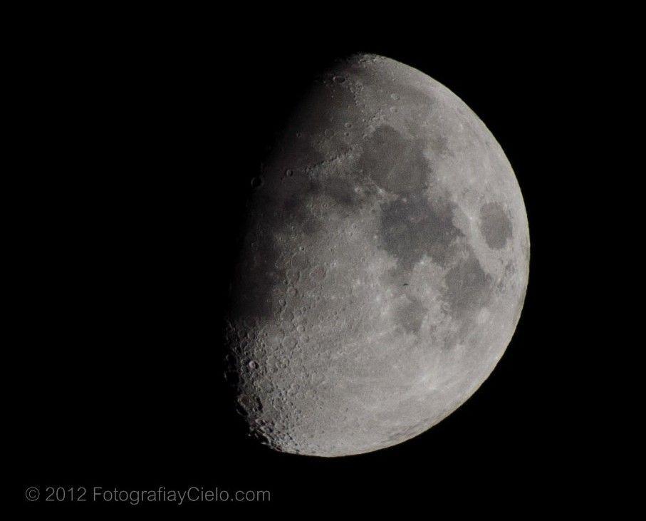 Luna en fase gibosa creciente con ave