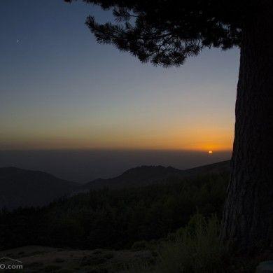 Puesta de Sol junto a un pinar en Sierra Nevada