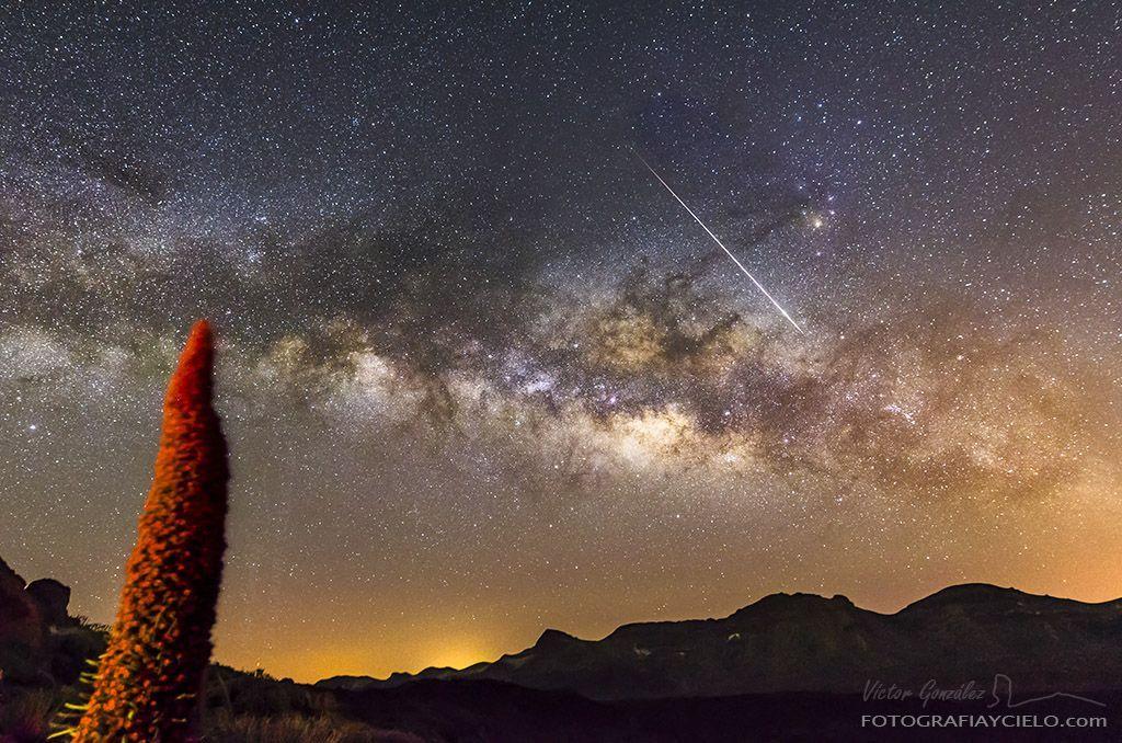 Tajinaste Rojo contemplando la Vía Lácta y un meteoro