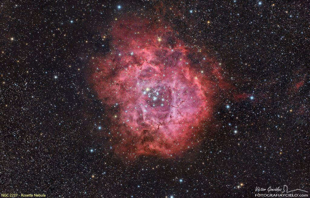 Rosette Nebula NGC 2237